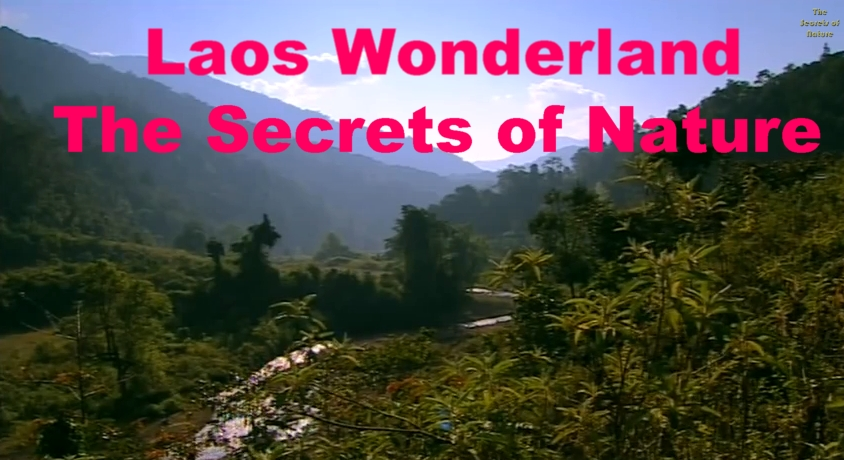 Image result for Laos Wonderland The Secrets of Nature Images